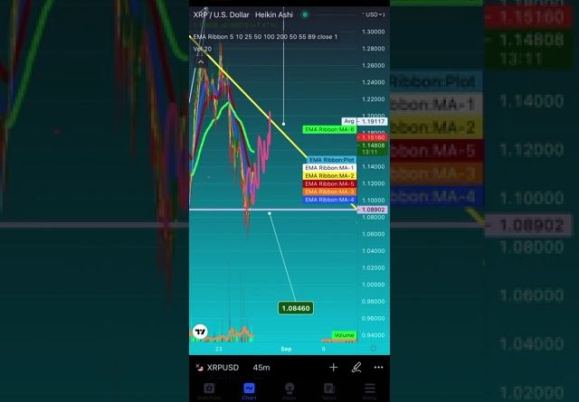 EMERGENCY ALERT CRYPTO CRASH  THIS WEEKEND CANT MISS LIQUIDATION PRICE FORECAST